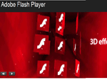 fotografia programului: Adobe Flash Player