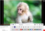 photo program: AnyMP4 Screen Recorder