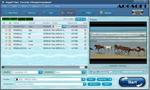 photo program: Aogsoft Video Converter