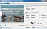 foto del programa: Boilsoft Video Splitter