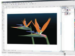 fotografia: CorelDRAW Graphics Suite
