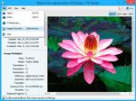 fotografia del programma: File Viewer Lite