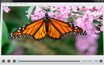 photo: Free Video Player