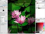 photo program: The GIMP