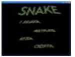 fotografia: Snake