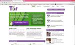 fotografia del programma: Tor Browser Bundle